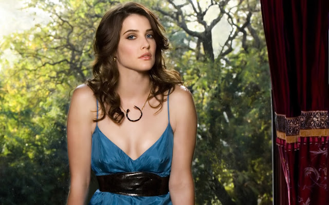 cobie smulders wallpaper. HD Wallpapers: Cobie Smulders