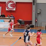 basket 233.jpg