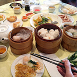 delicious Chinese dim sum at Dim Sum King in Chinatown, Toronto in Toronto, Ontario, Canada