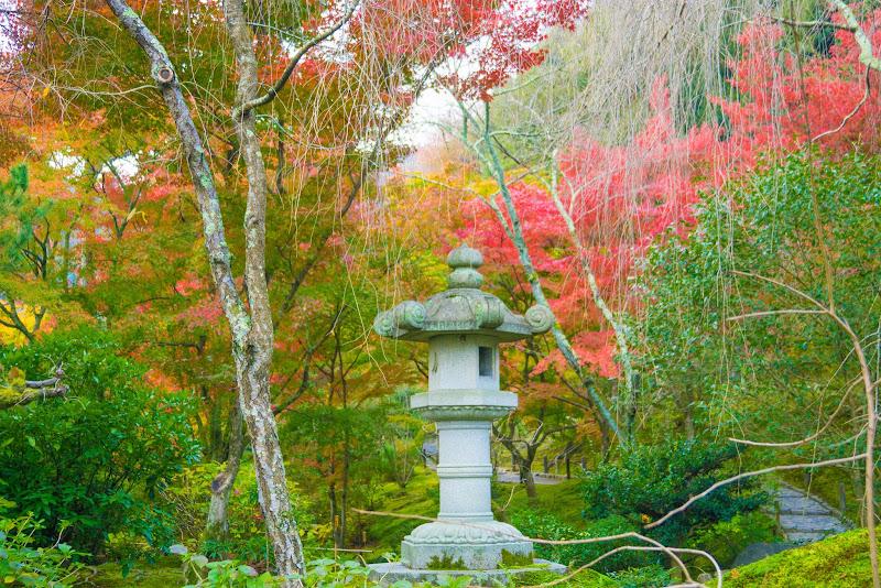 京都 紅葉 天竜寺 写真5