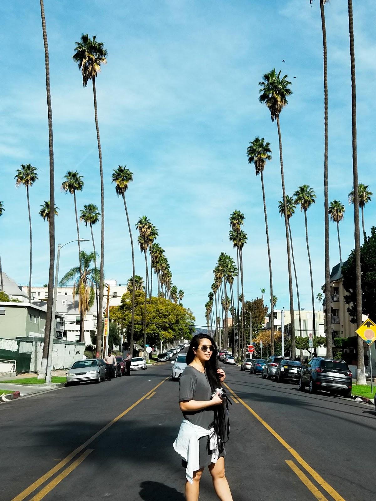 seattle blogger LA cali socal palm trees