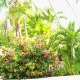 Key West Vacation - 116_5670.JPG