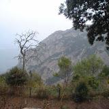 Campaments amb Lola Anglada 2005 - X11FA2%257E1.JPG