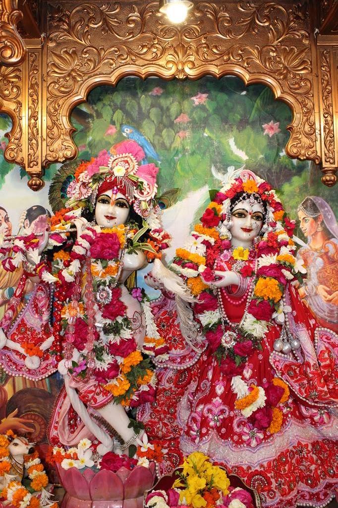 ISKCON Vallabh Vidhyanagar Sringar Deity Darshan 05 Mar 2016 (9)