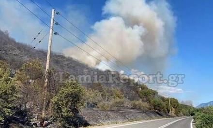 Μεγάλη φωτιά τώρα στη Φθιώτιδα - Απειλούνται σπίτια - Διεκόπη η κυκλοφορία στην εθνική οδό