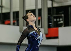 Han Balk Fantastic Gymnastics 2015-9129.jpg