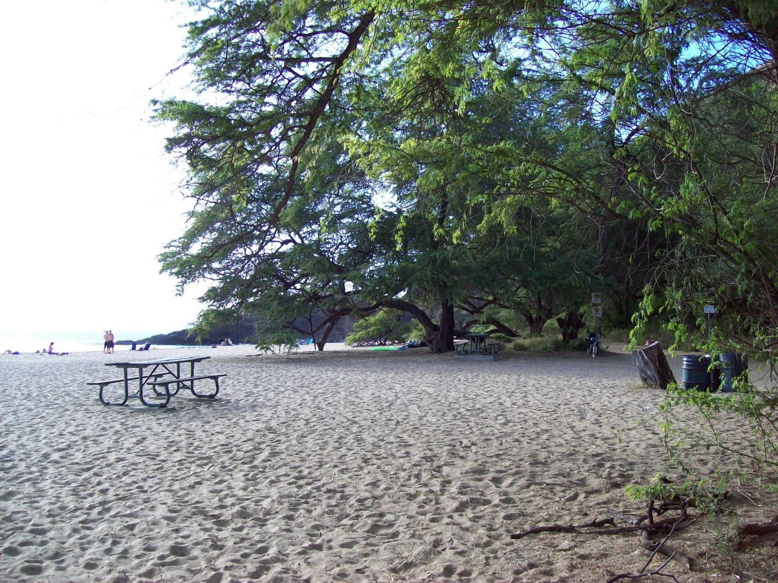 Hawaii Day 6 - 100_7699.JPG