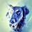 Zarathustras Child (w33dpup)'s profile photo
