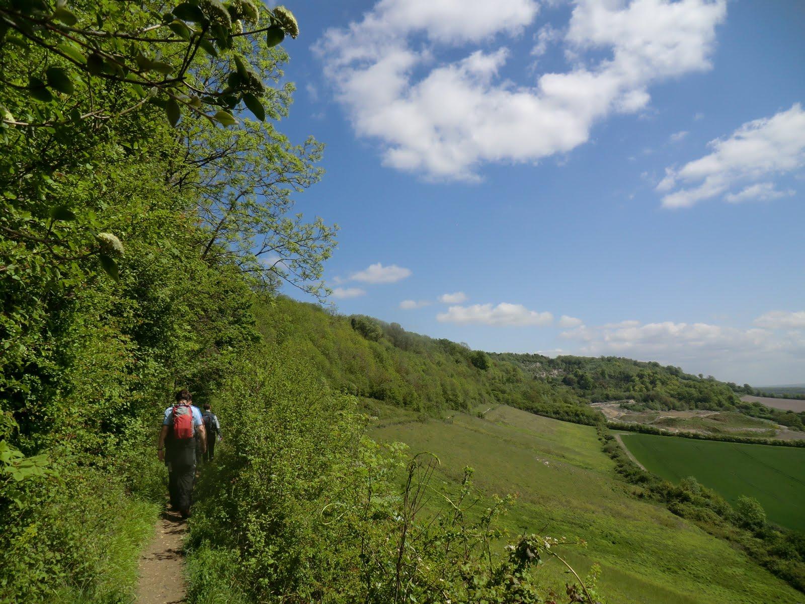 CIMG8125 Along the North Downs Way