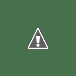 Vulcani. Origine, evoluzione, storie e segreti delle montagne di fuoco