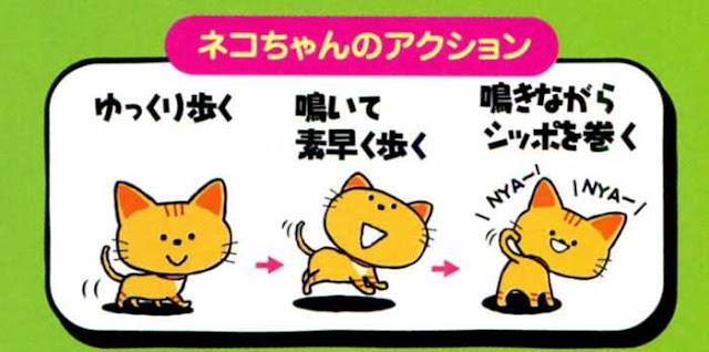 Mèo con biết nói và biết đi Baby Persian Cat