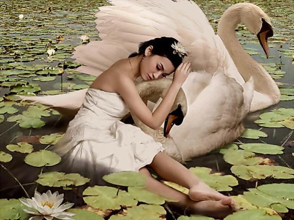 White Swan Girl, Magic Beauties 1