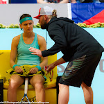 Lucie Safarova - Mutua Madrid Open 2015 -DSC_4069.jpg