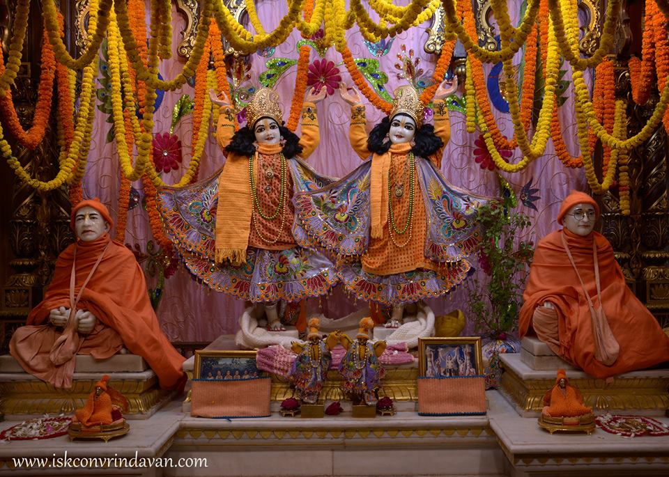 ISKCON Vrindavan Mangla Deity Darshan 16 Jan 2016  (4)