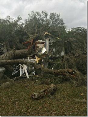 Storm - January 22, 2017