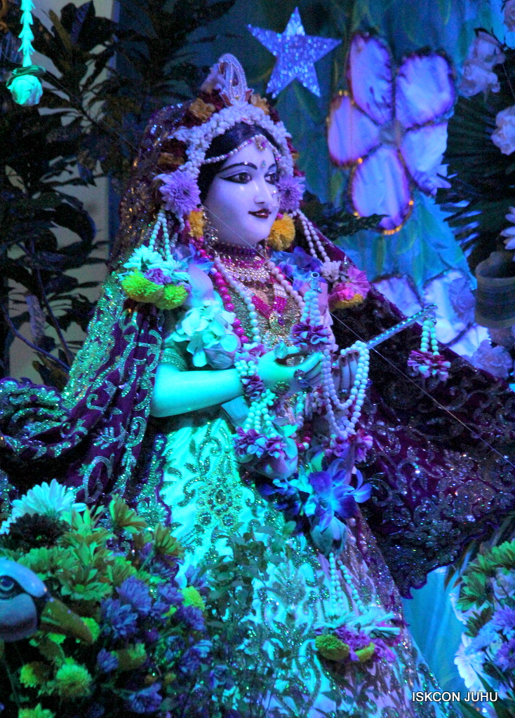 Sharad Purnima Deity Darshan on 16th Oct 2016 (8)