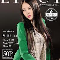 LiGui 2015.03.23 网络丽人 Model 菲菲 [50+1P] cover.jpg