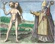 Albertus Magnus From Maier Symbola Aurea Mensae Franckfurt 1617