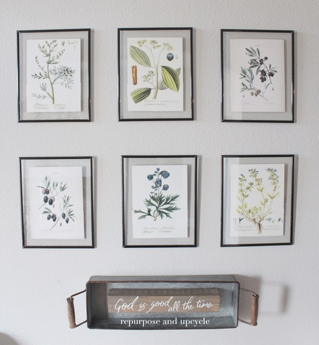 DIY-Framed-Botanical-Prints-with-Free-Botanical-Printables-4