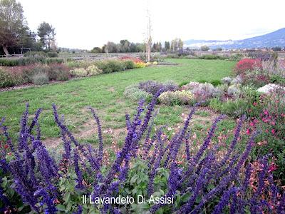 Assisi da visitare giardini botanici