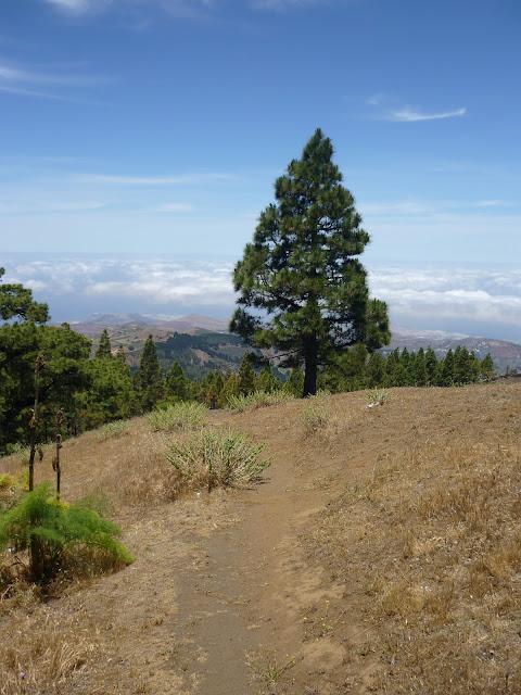 Wanderweg in Gran Canarias Bergland