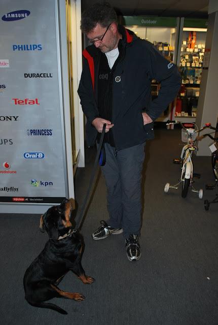 KNON-honden in Emmen - DSC_0799.JPG
