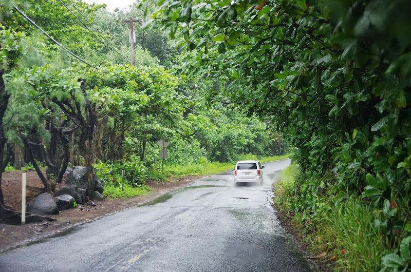 06-25-13 Annini Reef and Kauai North Shore - IMGP9289.JPG