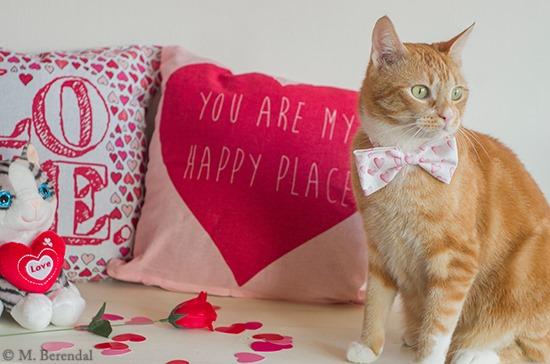 [Teddy_Valentine_17%5B4%5D]