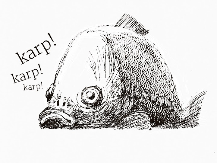 The carp made with Sketches