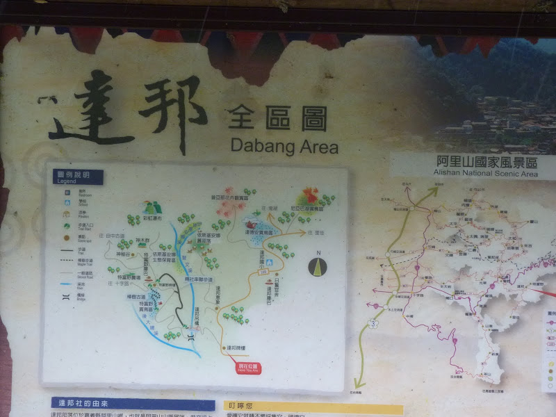 TAIWAN  Dans la region d ALISHAN - P1130789.JPG