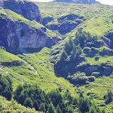 Lieu de passage de Parnassius sacerdos (phoebus). Fex Curtins, 2100 m (Engadine, Grisons, CH), 12 juillet 2013. Photo : J.-M. Gayman