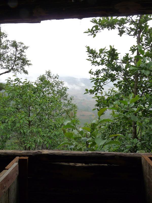 Des toilettes, vue imprenable sur la montagne, et surtout c est bien aere