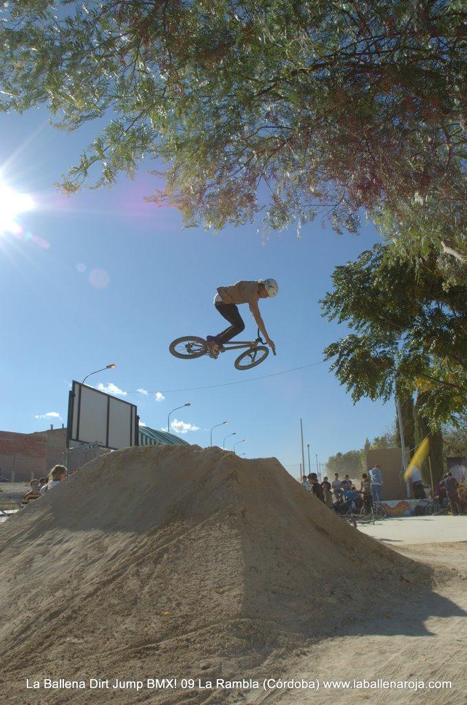 Ballena Dirt Jump BMX 2009 - BMX_09_0058.jpg