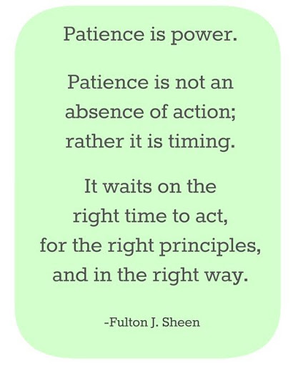 50 Beautiful And Wise Quotes About Patience With Images Quote Ideas
