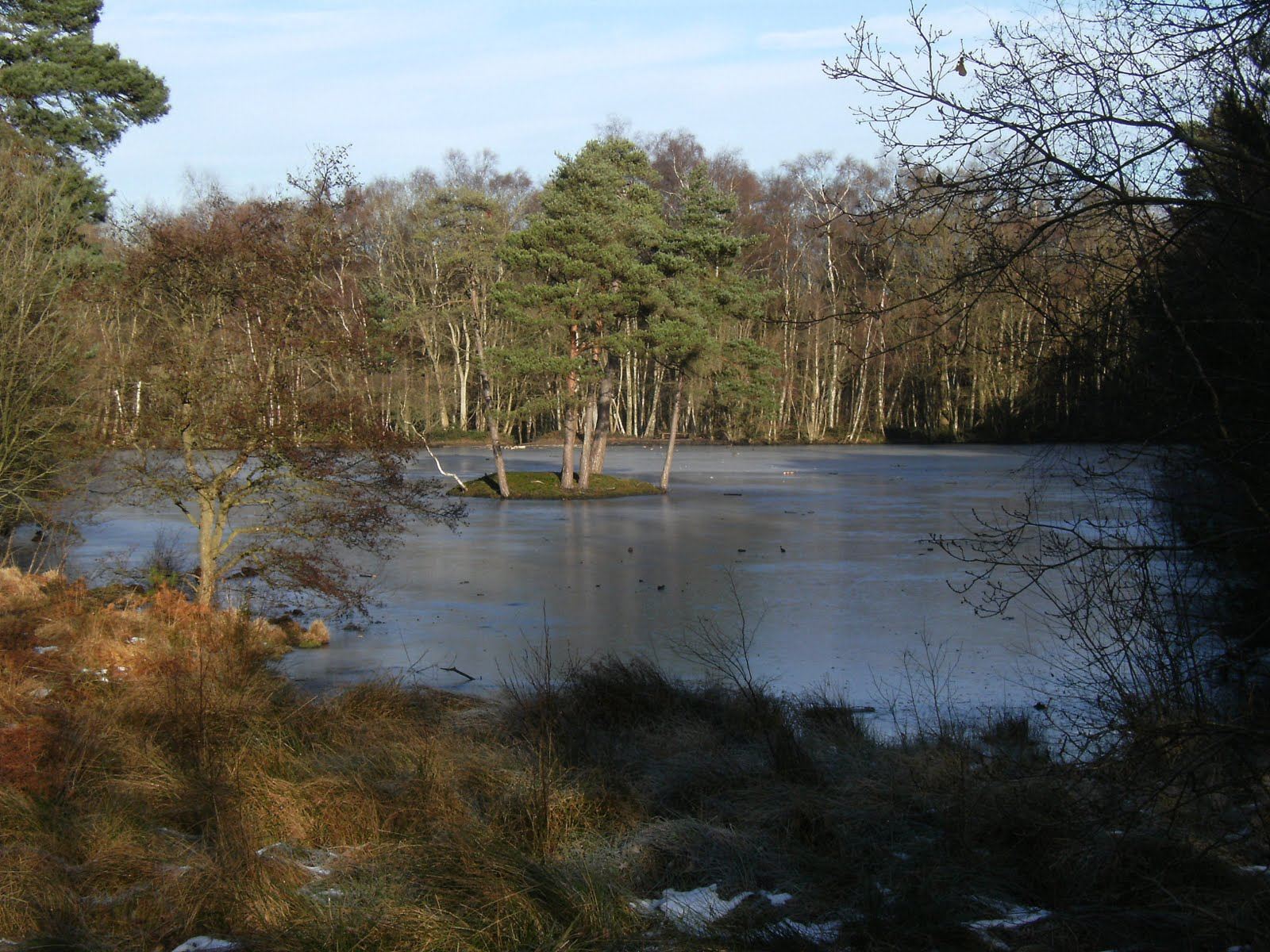 2009 12280011 Heath Pond in winter