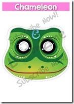 camaleon mascara 12 (2)
