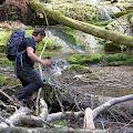 srušeno drveće otežava prolazak