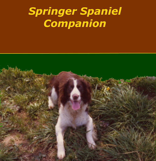 Phil Springer