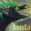 Marcus Foitzik (Tantalum)'s profile photo