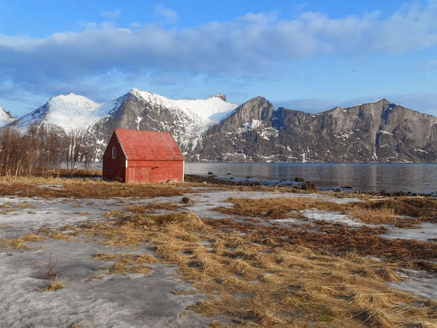 Norvège mars 2014 SAM_1225