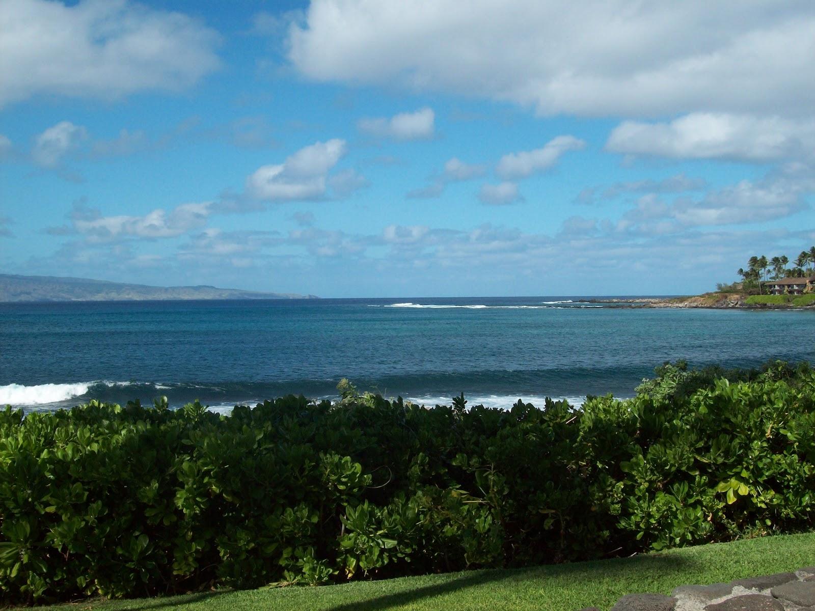 Hawaii Day 6 - 114_1789.JPG