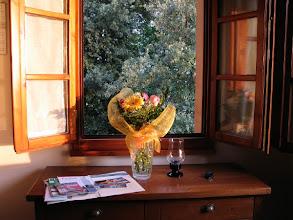 """Photo: Ein warmer Empfang bei warmem Abendlicht: Meine Aussicht aus dem Wohnraumfenster im """"Borgoiano"""", Toskana."""