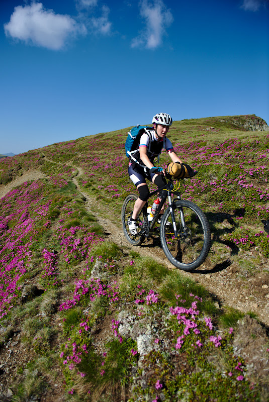 Rododendron cycling.