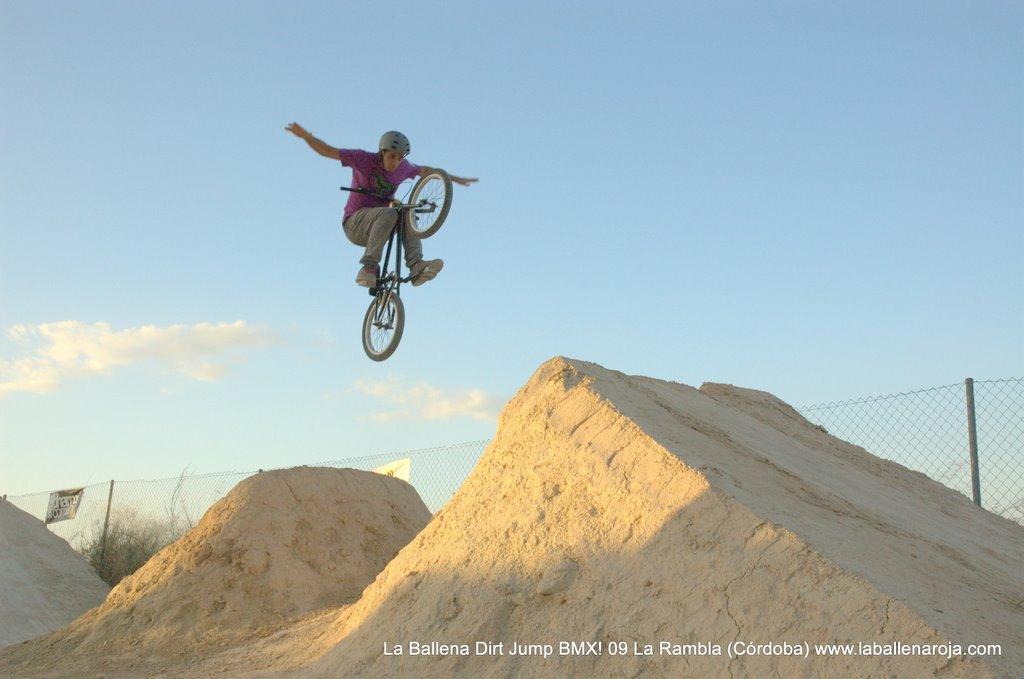 Ballena Dirt Jump BMX 2009 - BMX_09_0136.jpg
