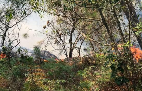 Fuego forestal en Constanza consume 1,166 hectáreas