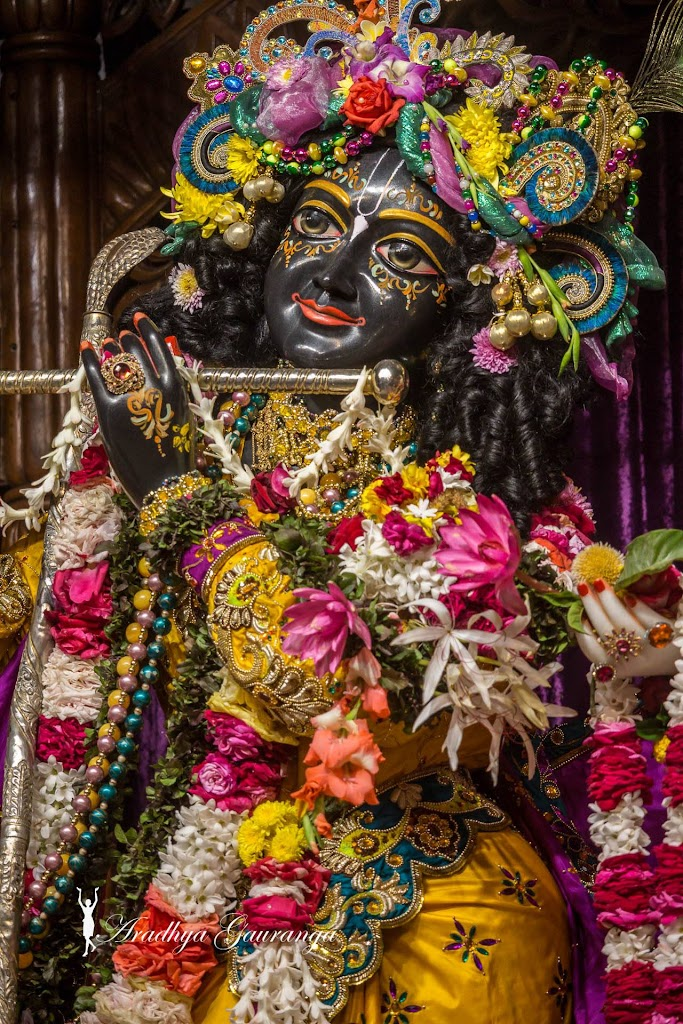 ISKCON Mayapur Deity Darshan 31 Dec 2016 (3)
