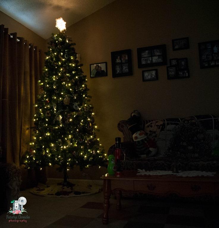 [Christmas+trees-1%5B4%5D]
