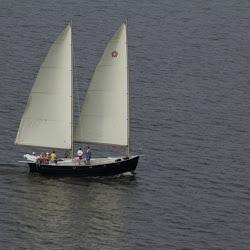 Dauphin Island Race 2013 023