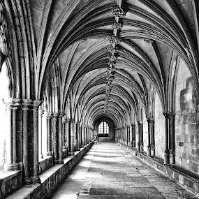by Bob White - Buildings & Architecture Places of Worship ( norwich, church, cathedral,  )