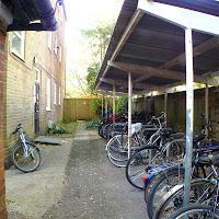 117 Back Bike Rack